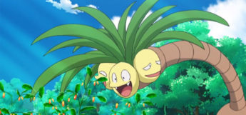 Alolan Exeggutor faces from the anime