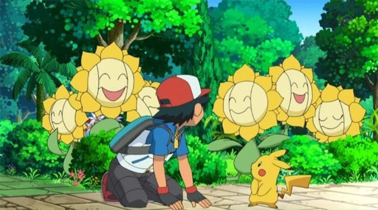 Sunflora screenshot sunflower Pokemon anime