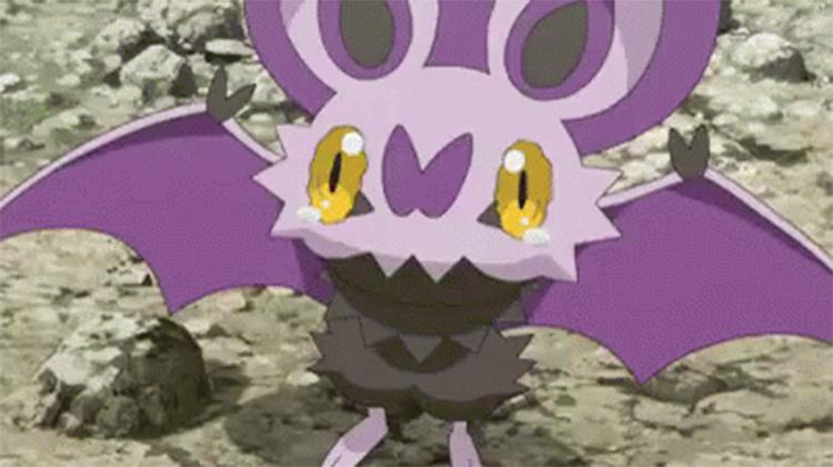 Noibat in the Pokemon anime