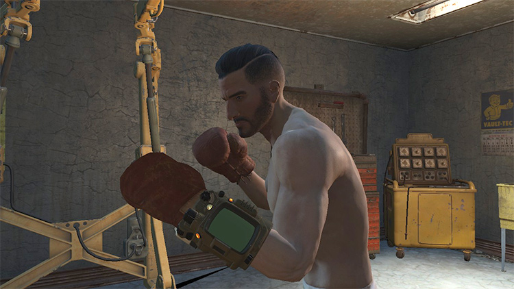 Left Boxing Glove FO4