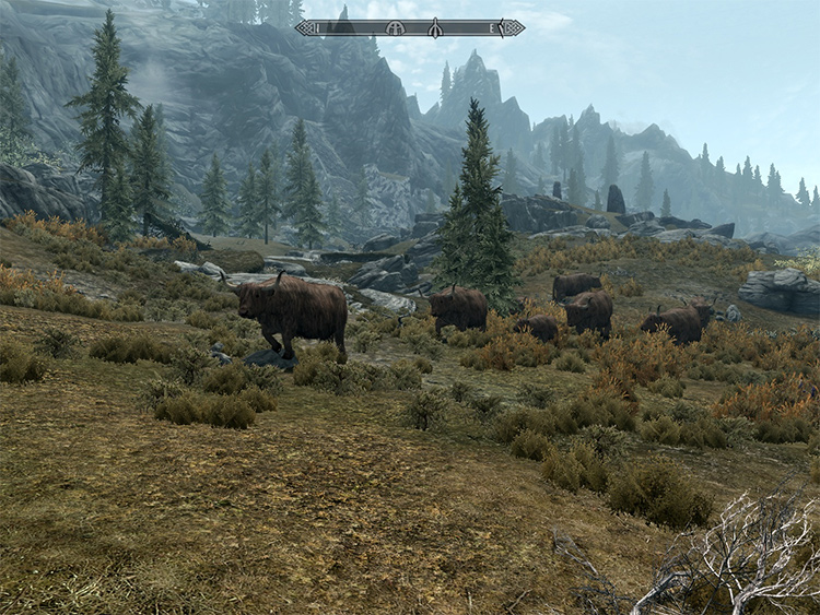 Real Wildlife in Skyrim