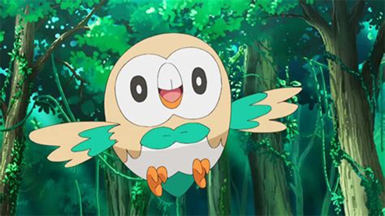 Rowlet in the anime