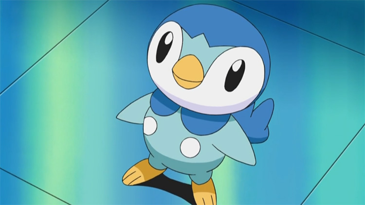 Piplup in the anime