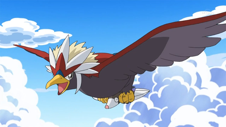 Braviary in the anime