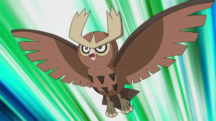 Noctowl in the anime