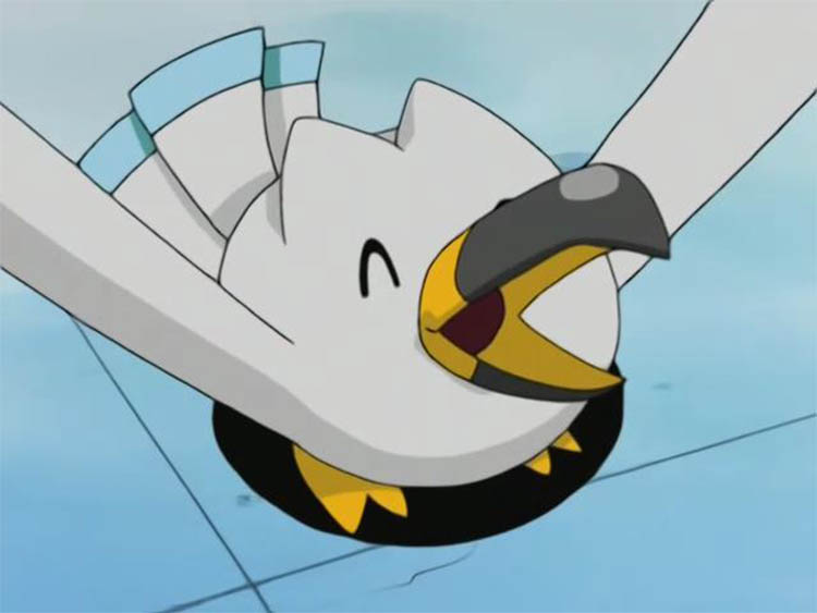 Wingull in the anime
