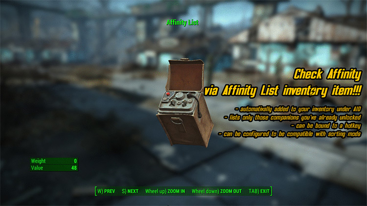 Visible Companion Affinity FO4