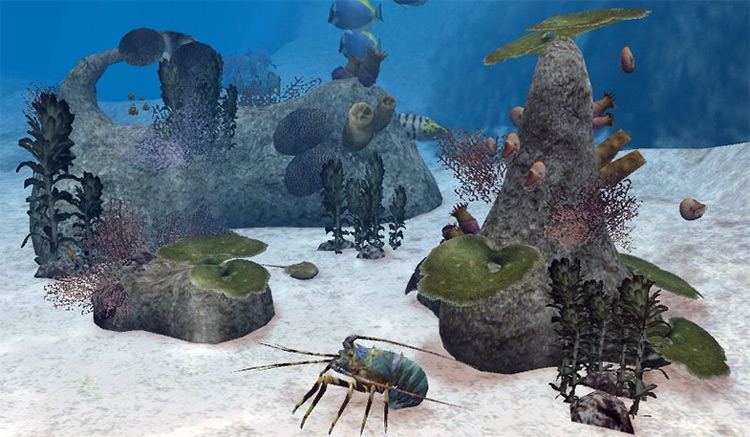 Reef Animated Pack for Zoo Tycoon 2