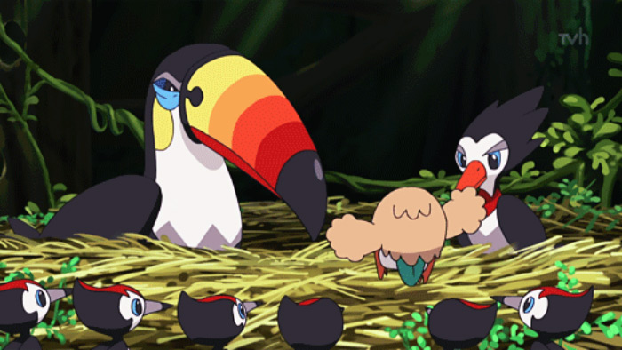 Toucannon pokemon design