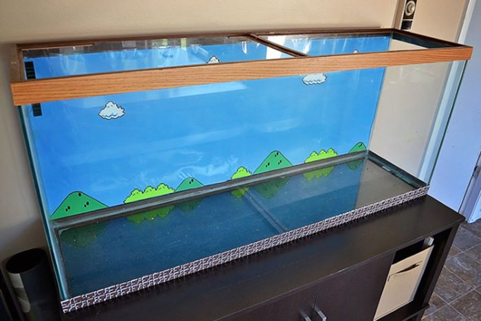 Mario inspired aquarium
