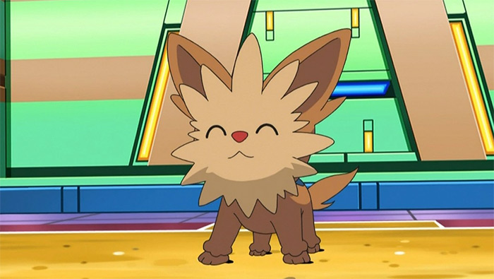 Lillipup pokemon anime