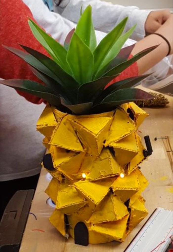 Pineapple house diy