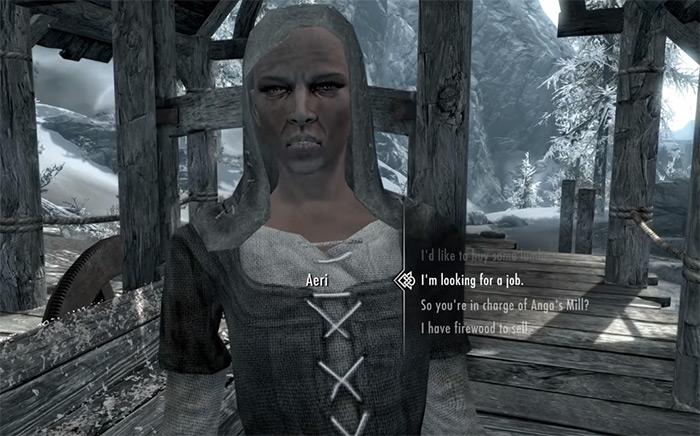 Aeri character wife
