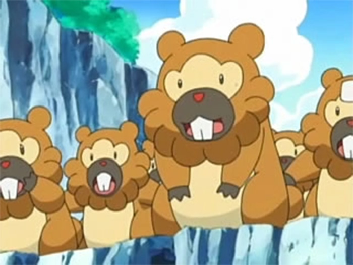 Bidoof anime pokemon