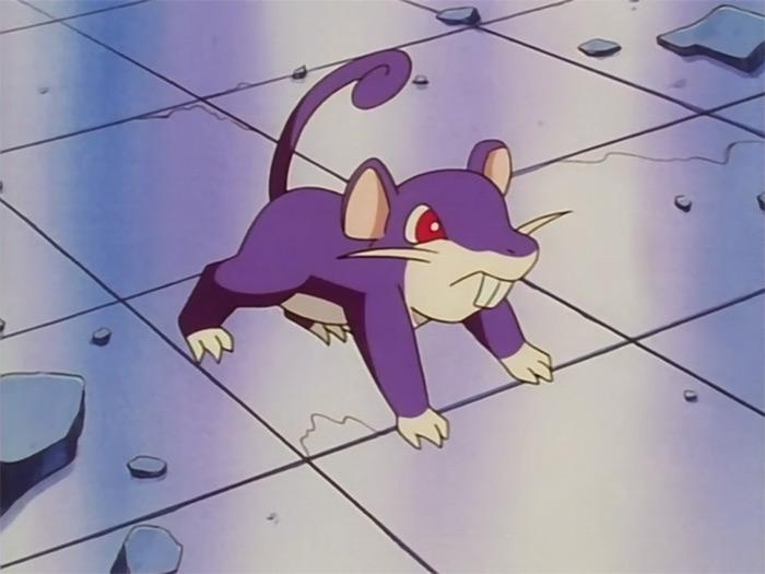 Rattata anime pokemon