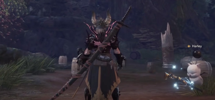 MHW warrior carrying long sword