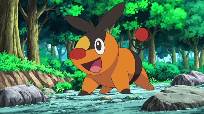 Tepig in Pokemon