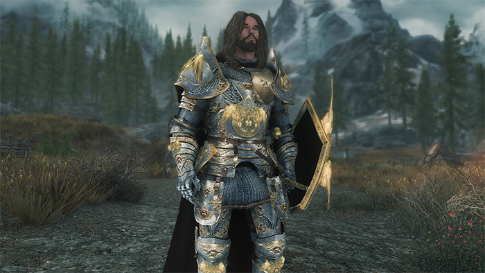 Lost Paladins of the Divines Wrath Armor mod