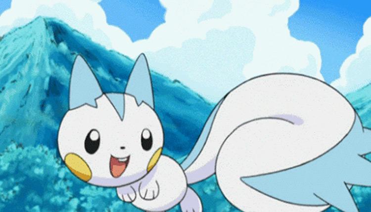 Pachirisu in the anime