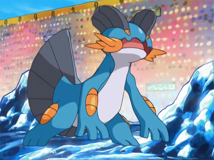 Swampert in Pokemon anime