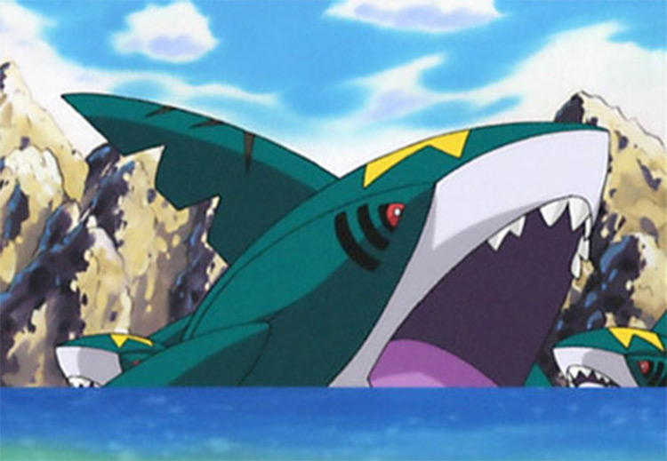 Sharpedo Pokemon in the anime