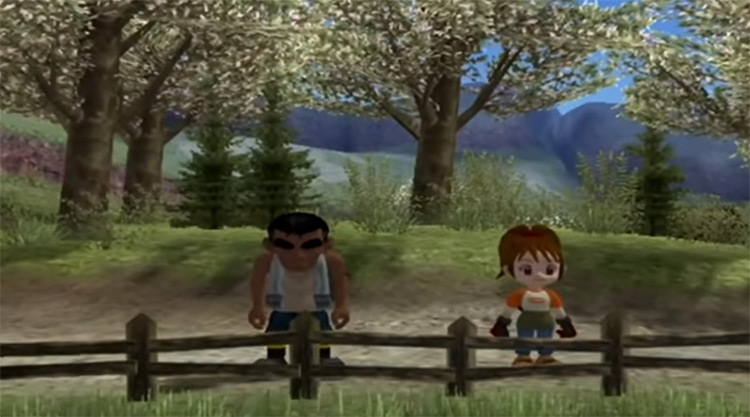 Harvest Moon Another Wonderful Life screen