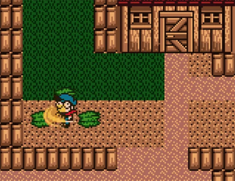 Harvest Moon GB 1998 screenshot