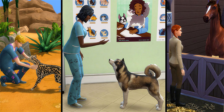 Animal Care Sims 4 mod