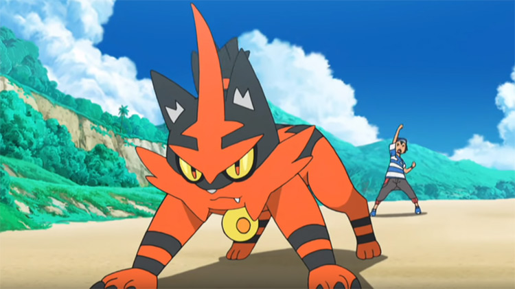 Torracat in the Pokemon anime