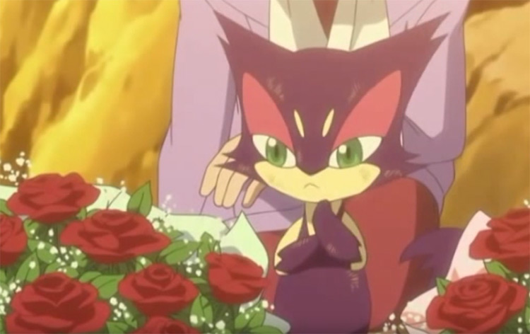 Purrloin in Pokemon anime