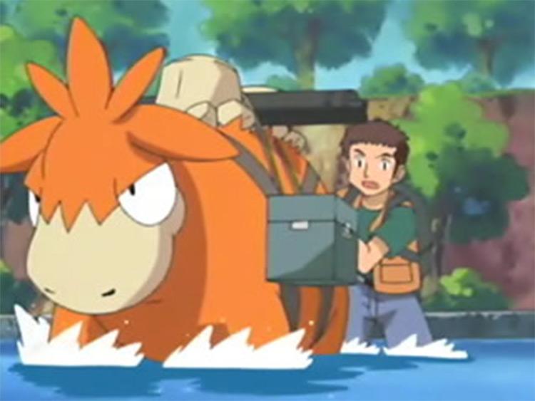 Camerupt screenshot from Pokemon anime